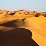 Morocco days : Merzouga